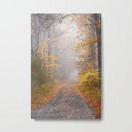 Road in Autumn Mist Metal Print
