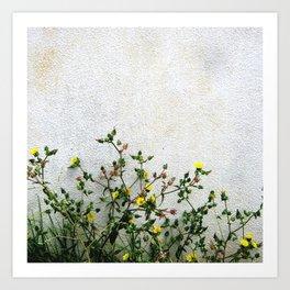 Minimal flora - yellow daisies wild flowers Art Print
