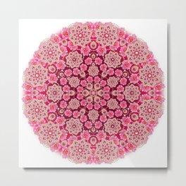 Pink Fizz Metal Print