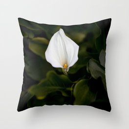 Flower Photography by Jason Leung Throw Pillow