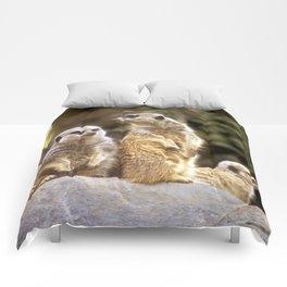 Act Natural Meerkats Comforters