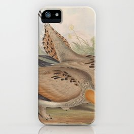 Tibetian Short toed Sand Grouse iPhone Case
