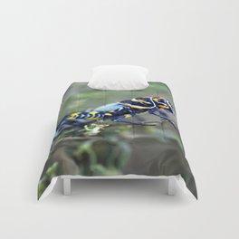 Colored Grasshopper Comforters