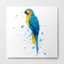Watercolor Blue and Gold Macaw Metal Print