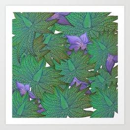 Australica Agave Art Print
