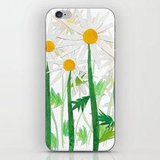 Danish Daises iPhone & iPod Skin