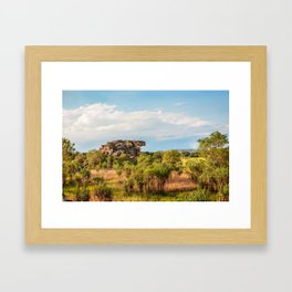 Almost typical Australian Landscape: green and gold Framed Art Print