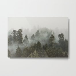 Adventure Times - Nature Photography Metal Print