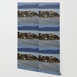 Seal Sisters Wallpaper