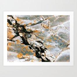Natural Texture Art Print