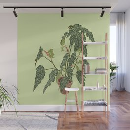 Begonia Houseplant Illustrated Print Wall Mural