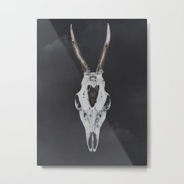 Roe Deer Skull with Death Hawk Moth Metal Print
