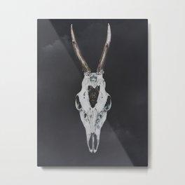 Roe Deer Skull with Death Hawk Moth Metal Print
