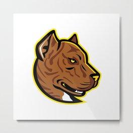 Spanish Bulldog or Spanish Alano Mascot Metal Print
