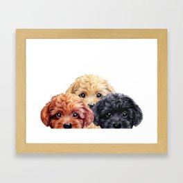 Toy poodle trio, Dog illustration original painting print Framed Art Print
