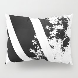 Looking Through the Negative Pillow Sham