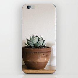 indoor agave iPhone Skin