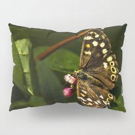 Butterfly feeding on nectar Pillow Sham