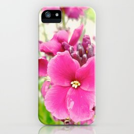 Chartwell iPhone Case