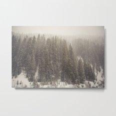 Whiteout Metal Print