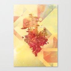 Bocuma 02 Canvas Print