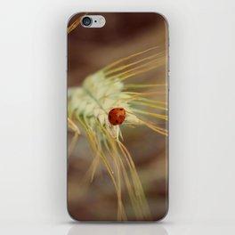 Ladybug on wheat iPhone Skin