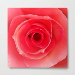 Macro Rose - Digital Painting. Metal Print