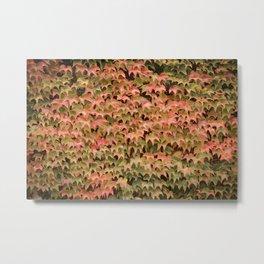 Autumn is here Metal Print