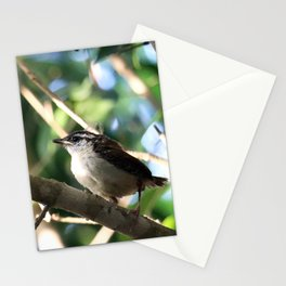 Peeper Stationery Cards