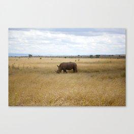Rhino. Canvas Print