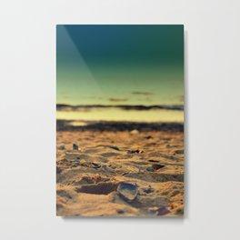 mussel on sand Metal Print