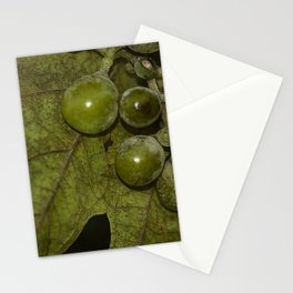 Grapevine Stationery Cards