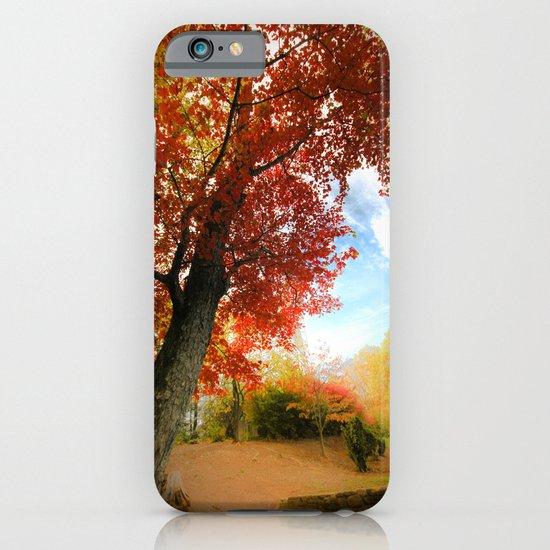 Autumn Tree Scene iPhone & iPod Case