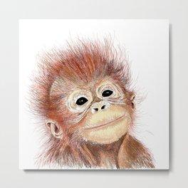 Baby orangutan sketch hand drawn.  Metal Print