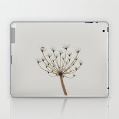 Dried up Laptop & iPad Skin