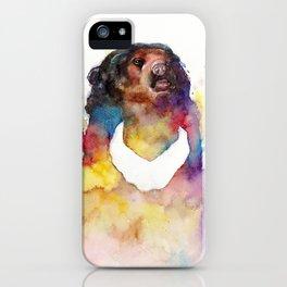 malayan sun bear iPhone Case