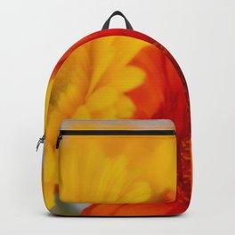 Soft Gerber Bunch Backpack