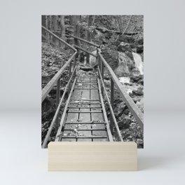 wooden bridge Fischbach, black and white photography Mini Art Print