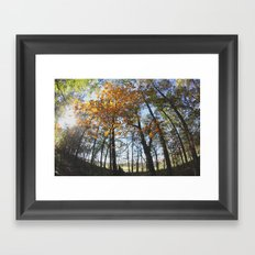 Fall in my Backyard Framed Art Print