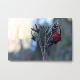 near death Metal Print