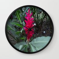 ginger Wall Clocks featuring Ginger by Alex Braman