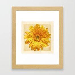 Beautiful Blossom Framed Art Print