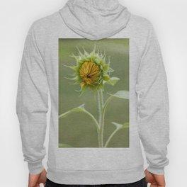Baby Sunflower Hoody