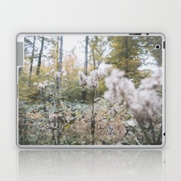 Forest (II) Laptop & iPad Skin