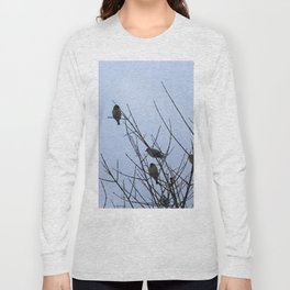Winter Birds on Bare Branches Long Sleeve T-shirt