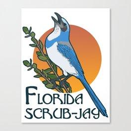 Florida scrub-jay Canvas Print
