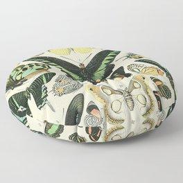 Adolphe Millot Papillons Floor Pillow