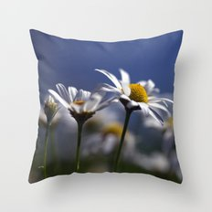 Daisies 3610 Throw Pillow