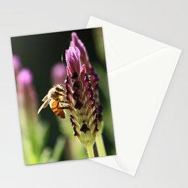 lavendula - III Stationery Cards