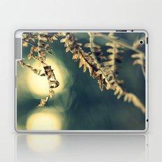 Winter Fern Laptop & iPad Skin